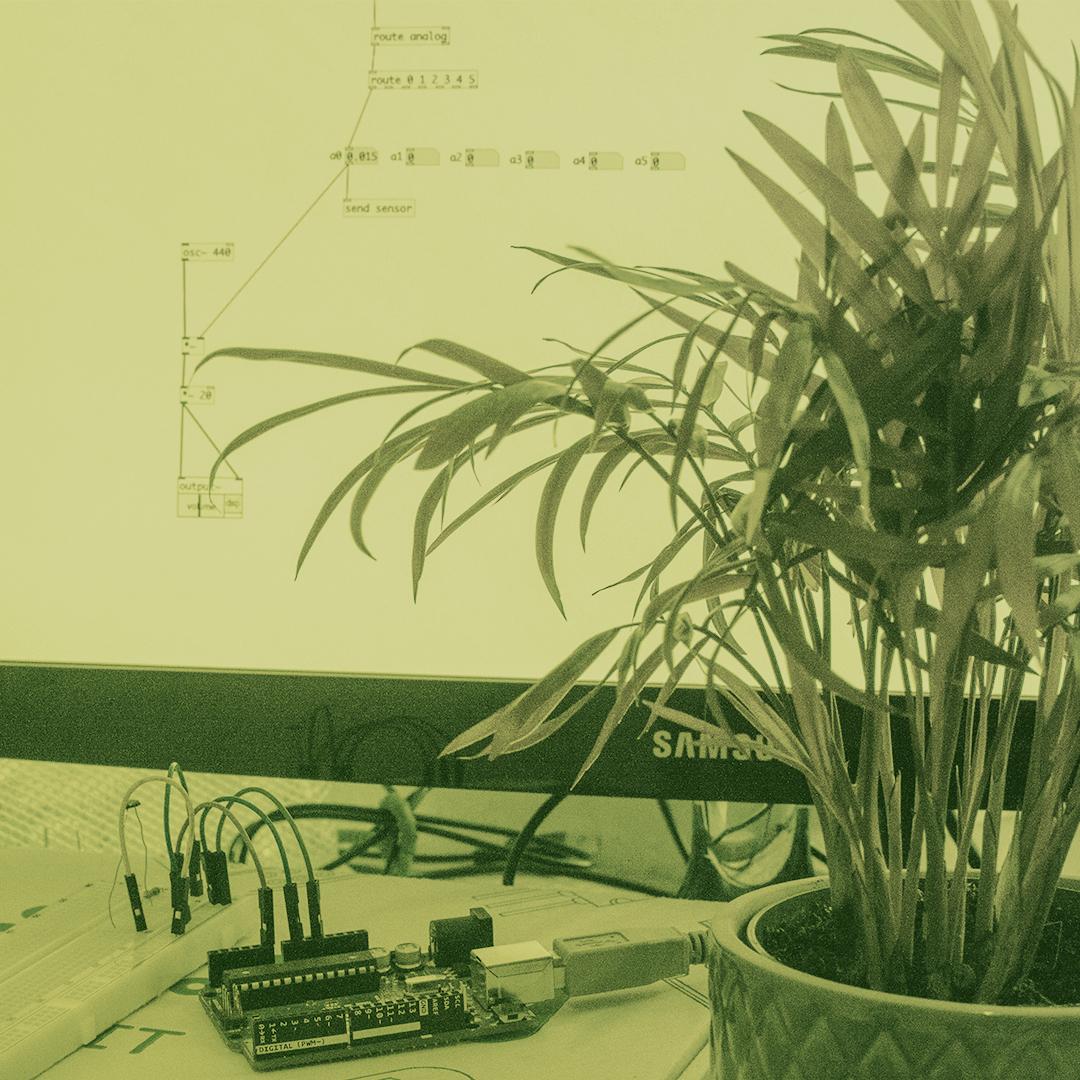 avant_garden